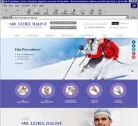 Mr. Lehel Balint