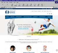 American Knee Institute
