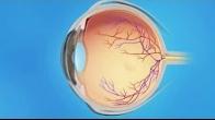 Dr. Tim Isaacs - Retina CME Injections