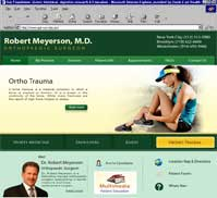 Robert Meyerson MD