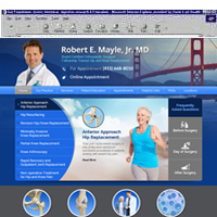 Robert Mayle MD
