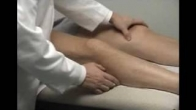Knee Physical Examination - Flexion & Extension - Dr. Tony Jabbour