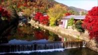 2019 Site Proposal - Kyoto, Japan