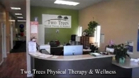 Two Trees Physical Therapy & Wellness