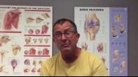 Bucket handle meniscus tear