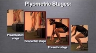 Physio Pro ACL Enhancement Program Fundamentals