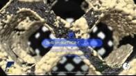 CASCADIA Interbody Systems Product Animation Featuring Lamellar Titanium Technology
