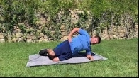 Modified Lateral Plank