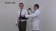 Rehabilitation Introduction: David Savin, MD