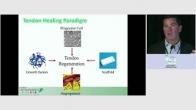 Biologic Association Presentation: Clinical Application of Orthobiologics - Tendons